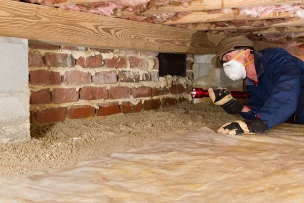 Inspector performing termite inspection.